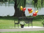 Bench dedicated to Rita Riley Nicholas overlooking Cayuga Lake where she once was a lifegard